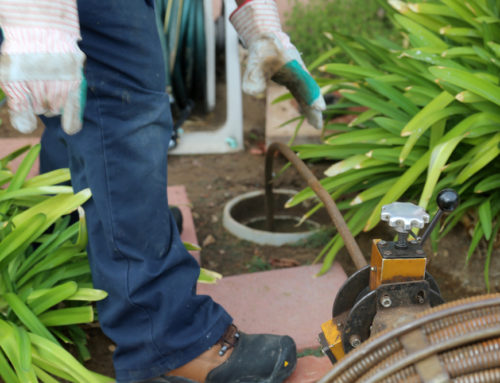 Annual Spring Plumbing Checkup: Here's What to Look For