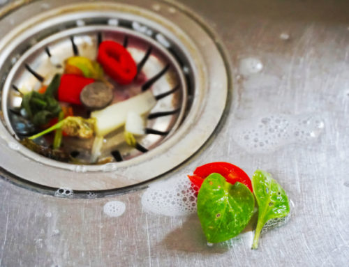5 Signs that it is Time for a New Garbage Disposal